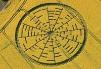 I cerchi nel grano nascondono formule matematiche!