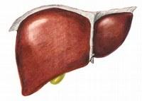 Equazione prevede bisogno trapianto di fegato