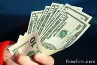 I soldi ci salveranno dalla febbre suina?