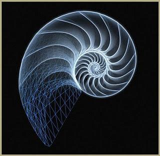 Davide e il fascino irresistibile per la successione di Fibonacci