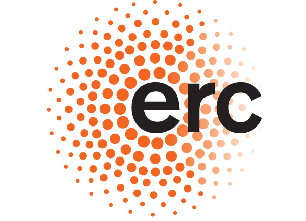 Assegnato un finanziamento ERC a un matematico italiano cervello