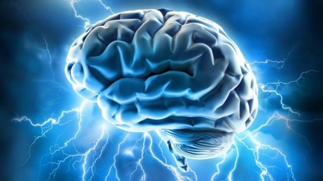 Il futuro dello studio del cervello? La topologia