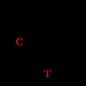 matumida11-1