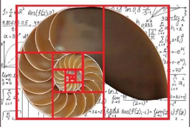 U math, collana di libri per i giochi matematici (recensione)