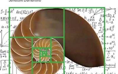 Teoria dei numeri (U Math – vol. 3) – recensione