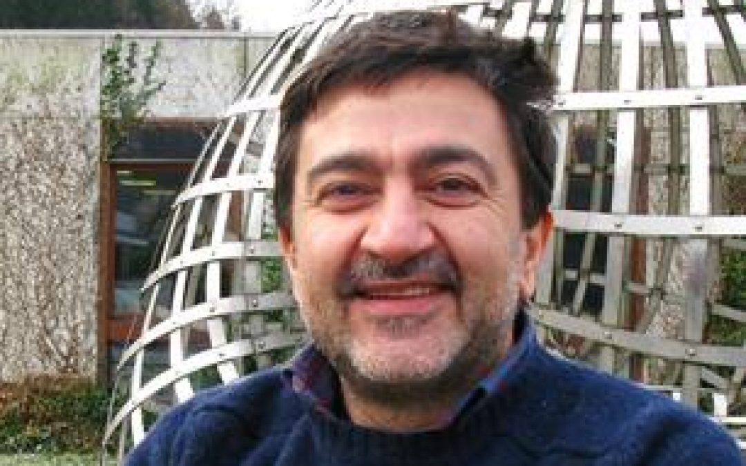 Antonio DeSimone vince il Premio Humboldt per la Ricerca