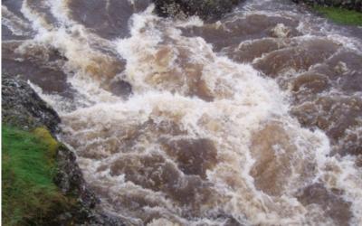 Trasportati da un flusso turbolento: dimostrata la legge di Batchelor