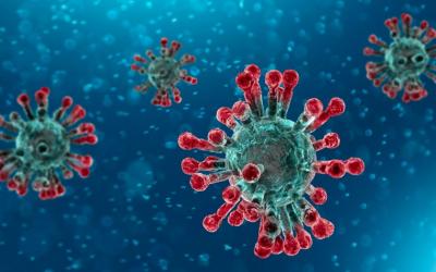 Coronavirus: uniti si vince. Lo dice (anche) un modello matematico