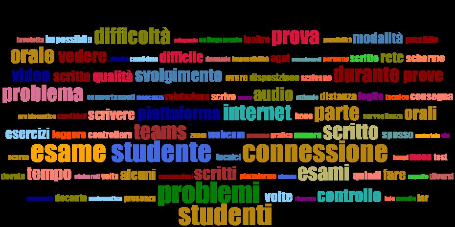 Commenti sui risultati del questionario sulla valutazione a distanza