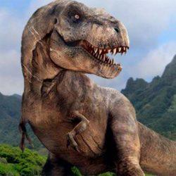 Il sesso di un fossile di dinosauro? Lo rivela la statistica