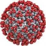 """Il segreto del """"successo"""" del coronavirus? La proteina Spike a forma di triangolo"""