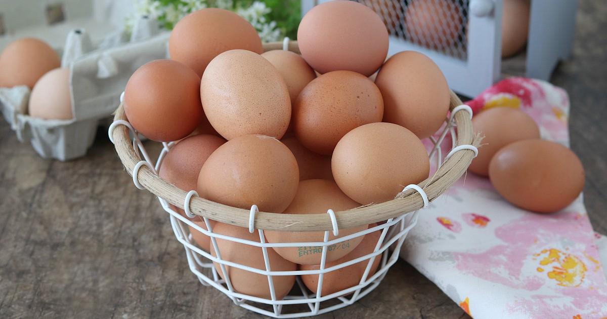 Trovata la formula universale dell'uovo: un piccolo passo per un uovo, un grande passo….