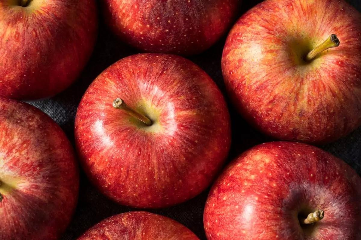 Ecco perché le mele sono proprio a forma di mela